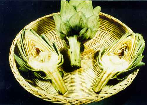 Plants id vegetables wisconsin 4 h projects artichoke view 1 mightylinksfo
