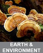 EARTH-ENVIRON