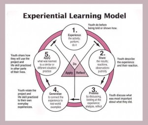 experiential-learning-model