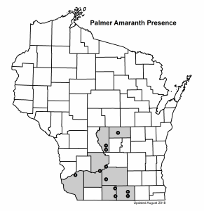 map of palmer amaranth presence in WI